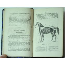 LA19 COURS ABREGE D'HIPPOLOGIE 1881