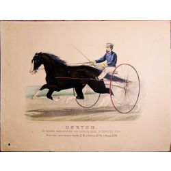 1871, Trotting horse, DEXTER, Hawkins Mare, Currier & Ives, chevaux, print, Litho