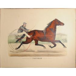 1887 Trotting horse, stallion  PATRON, Currier & Ives, chevaux, print, Litho