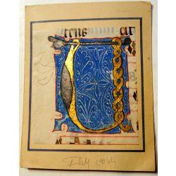 Enluminure, BIG Grande Lettre ornée U, 15ième Manuscrit manuscript parchemin,livre d'heures  la15