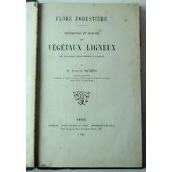 LA19 1858 Mathieu Flore forestière Description et histoire des végétaux ligneux qui croissent spontanément en France